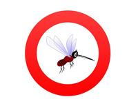 ACHTUNG Mücken
