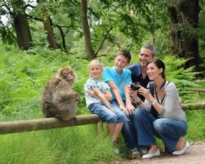 Affenberg Salem Familie