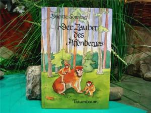 Kinderbuch Der Zauber des Affenberges