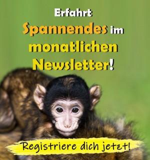 interesting idea Single haushalte deutschland 2015 words... super, excellent idea